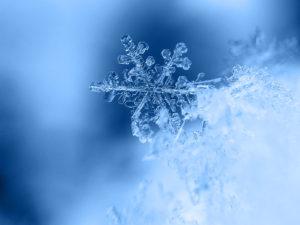 Allerta Neve